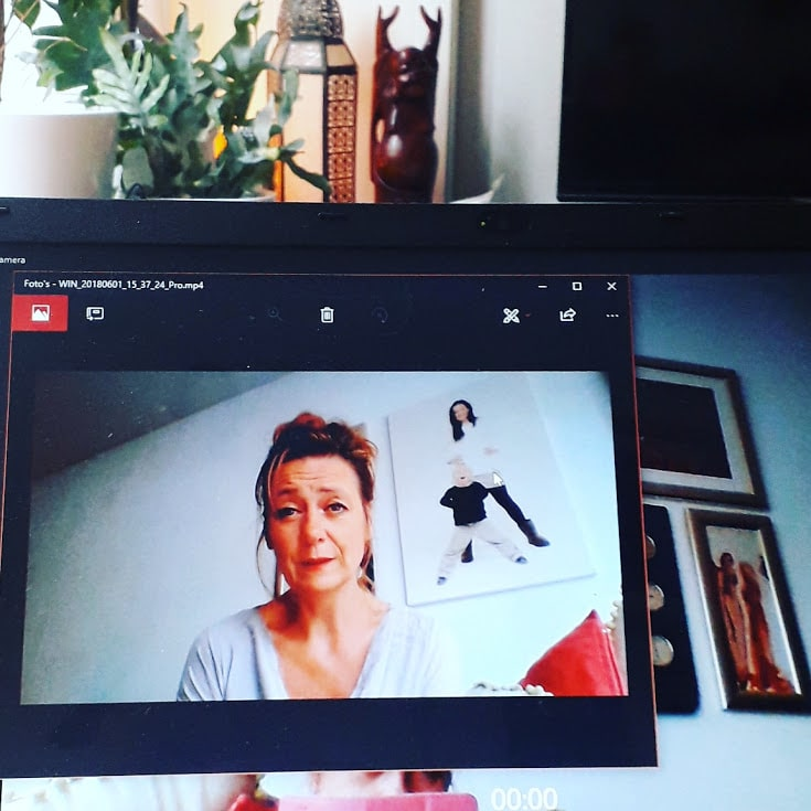 Online zichtbaarheid bloggen of vloggen marianne canters