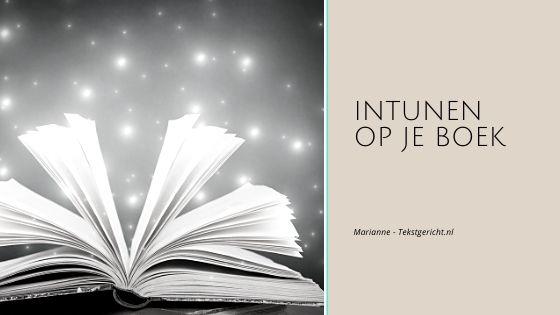 Intunen op je boek Marianne schrijfcoach ondernemers